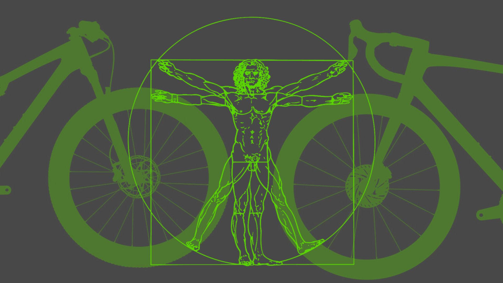 Comment choisir la taille de son vélo de location